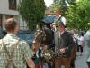 taxenbach_2011_193